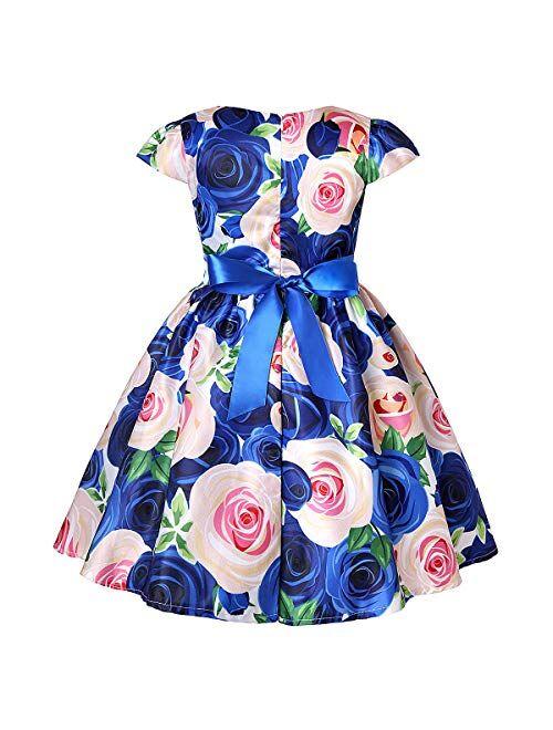 LLQKJOH Girl Dress Kids Ruffles Lace Party Wedding Bridesmaid Dresses