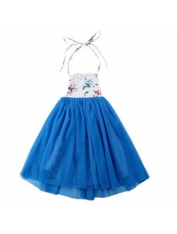 QIJOVO Baby Girls Backless Floral Floor Length Vintage Maxi Dress Tulle for Wedding Party Birthday