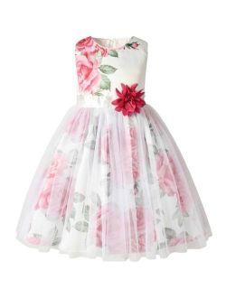 Toddler Girls Large Floral Mesh Overlay Dress