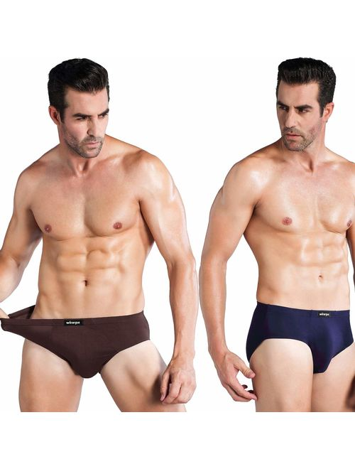 wirarpa Mens Underwear Multipack Modal Microfiber Briefs No Fly Covered Waistband Silky Touch Underpants
