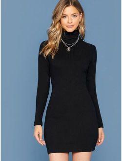 Turtleneck Rib-knit Bodycon Dress