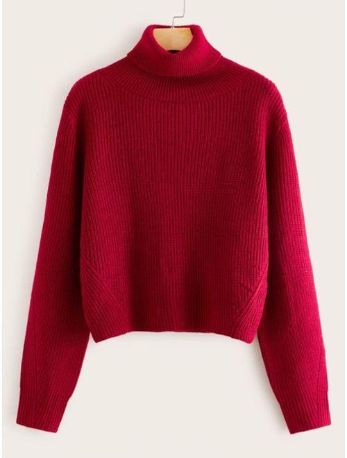 Turtle Neck Rib-knit Sweater