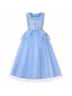 Little Big Girl Tulle Embroidery Princess Lace Dress for Kids Flower Party Fall Long Evening Dance Ball Gown