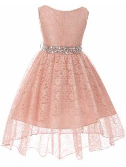 Little Girls Floral Lace Rhinestones Christmas Holiday Easter Flower Girl Dress