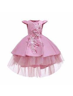 Little Girls Handmade Flower High Low Dress Birthday Party Fancy Lace Princess Costume Dance Ball Gown