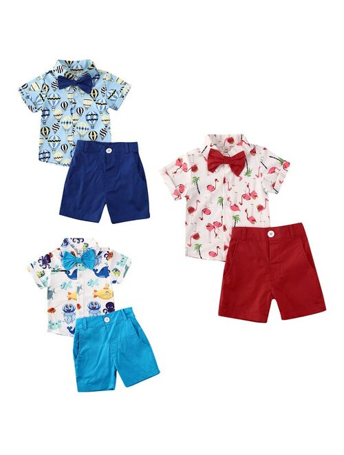 Hirigin 2Pcs Outfits Baby Summer Clothing Toddler Kids Baby Boy Flamingo Clothes Short Sleeve Shirt Tops Shorts Pants Blue 18-24 months