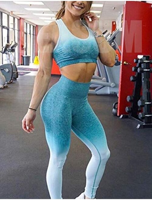 SEASUM Women's High Waist Ombre Seamless Gym Leggings Stretch Yoga Pants Running Workout Tummy Control Tights