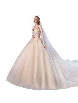 Women's Bridal Wedding Dresses Bride Wedding Dress Super Fairy Dream Big Tail Ladies Wedding Sling V Neck Bridal Gowns (Color : Photo Color, Size : Small)