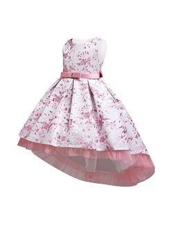 Baby Girls High-Low Vintage Ruffle Lace Embroidered Tutu Dress for Kids Pageant Wedding Flower Princess Communion Party Gown