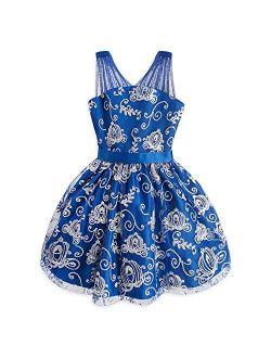Cinderella Fancy Dress- For Girls