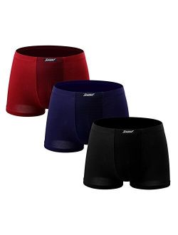 Shionf 3 Pack Men's Briefs Modal Lightweight Underwear Flyless Briefs Protective Mesh Pouch Trunks