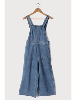 Paint by Numbers Medium Wash Striped Denim Overalls