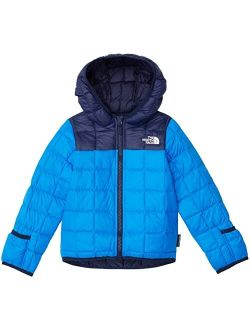 Thermoball Eco Hoodie (Infant)